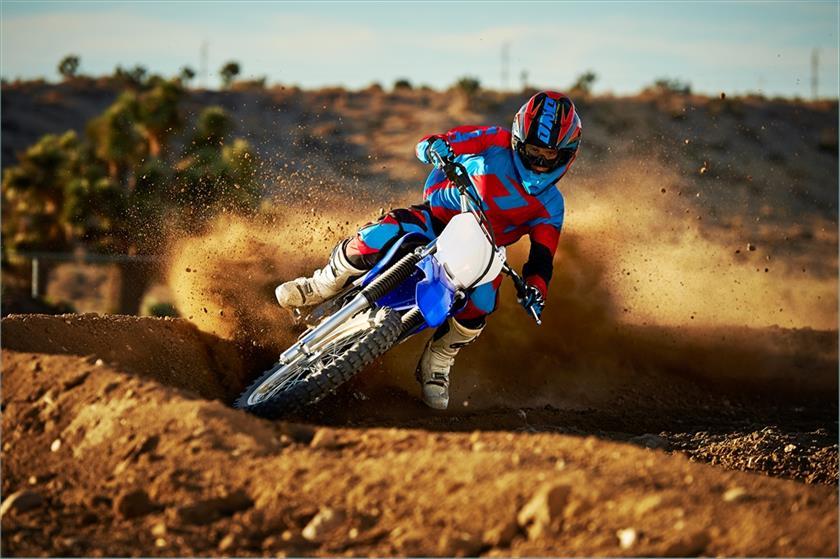 2015 Yamaha TT R230 Trail Motorcycle