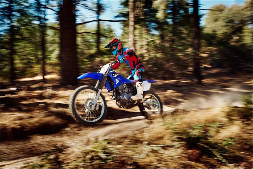 2015 Yamaha TT-R230 Trail Motorcycle - Model Home