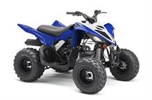 2019 Yamaha Raptor 90 - Studio Blue