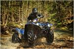 2019 Yamaha Grizzly EPS SE - Action Blue