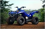2019 Yamaha Grizzly 90 - Beauty Blue