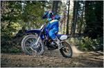 2019 Yamaha TT-R125LE - Action Blue
